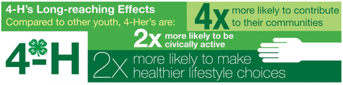 4-H Facts