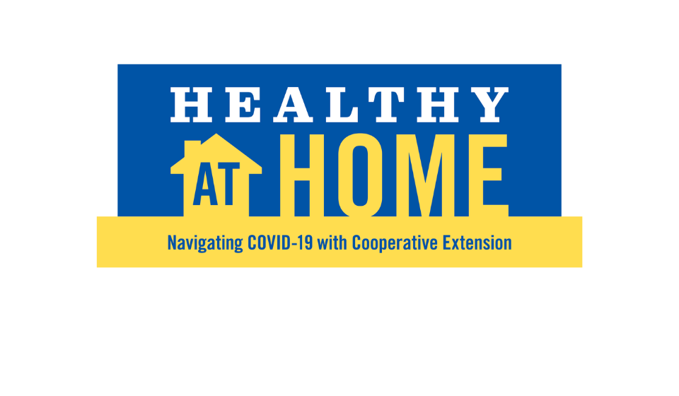 Healthy at Home Newsletter