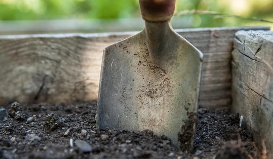 Effective August 1, 2020 fees for soil testing increased to $8 per sample. Click the link above for more information.