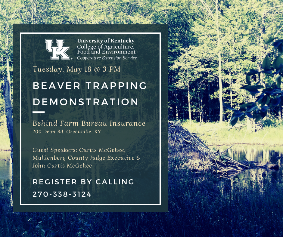 Beaver Trapping Demonstration May 18 at 3 PM behind Farm Bureau Insurance in Greenville. Contact 270-338-3124 by May 17 to register.